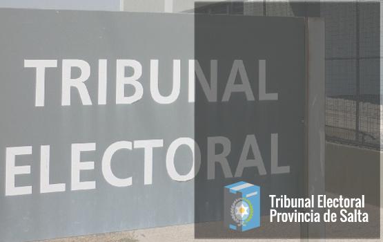 El sábado vence el plazo para presentación de listas de candidatos a convencionales municipales de cuatro municipios